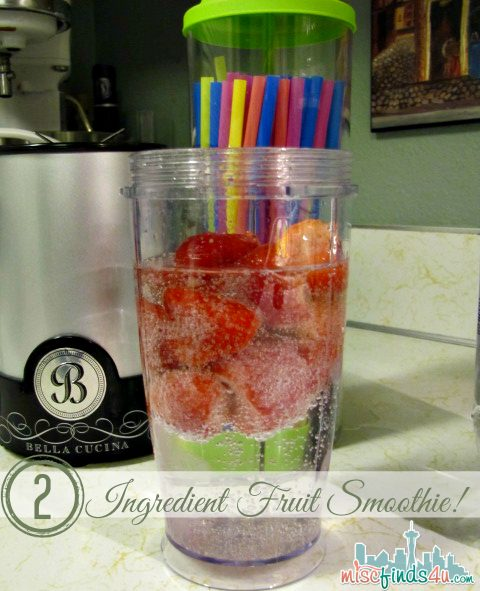 Two Ingredient Low Cal Fruit Smoothie Recipe