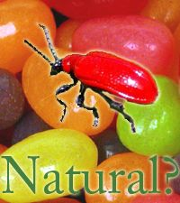 "shellac - a ""natural"" food additive maybe leagally, but totally disgusting as it's made from bugs"
