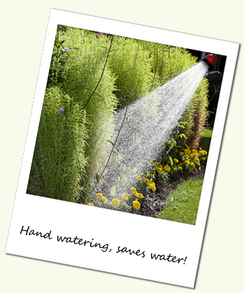 Hand watering your garden saves water