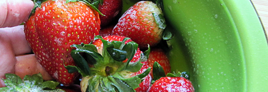 Easy steps to flash freezing and storing fruits and vegetables
