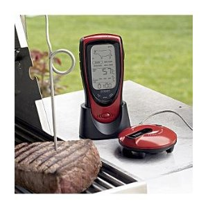 Wireless Talking BBQ and Oven Thermometer