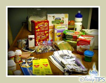 Disney Travel Tips – How I Save Money On Food at Disneyland and Walt Disney World