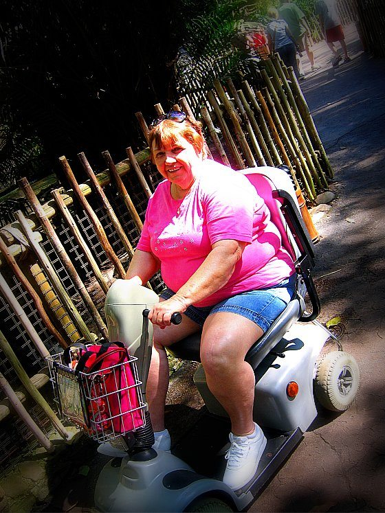 Rented Scooter at Animal Kingdom Walt Disney World