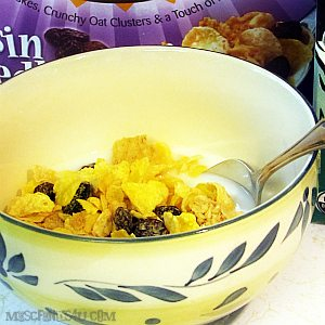 Post Cereal's Newest Cereal: Honey Bunches of Oats, Raisin Medley