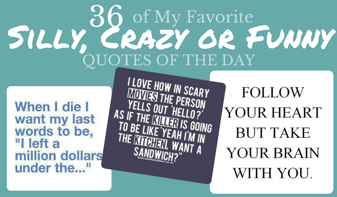 36 of My Favorite Silly, Crazy or Funny Quotes of the Day