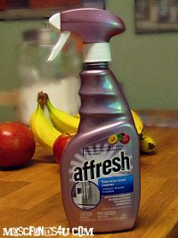 REVIEW – Affresh® Stainless Steel Cleaner – Did it Work?