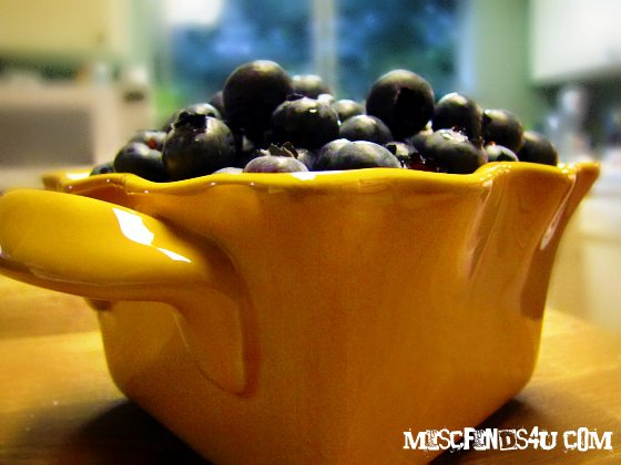 Drying Blueberries – Sun, Oven, and Dehydrating Tips