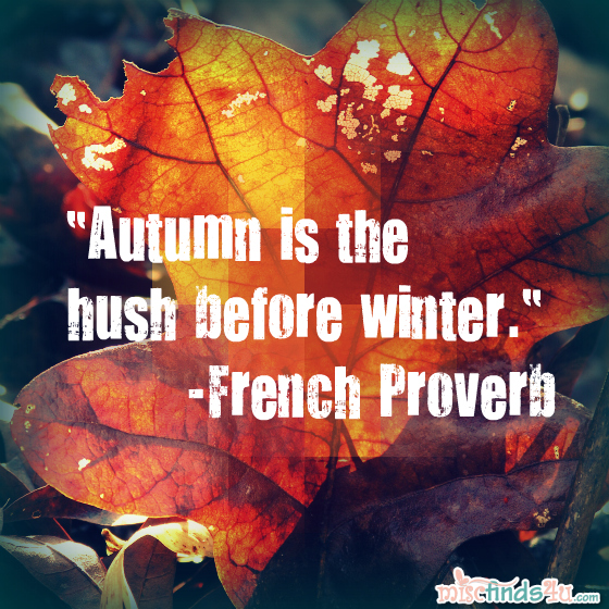 quotes reflections on the season of fall