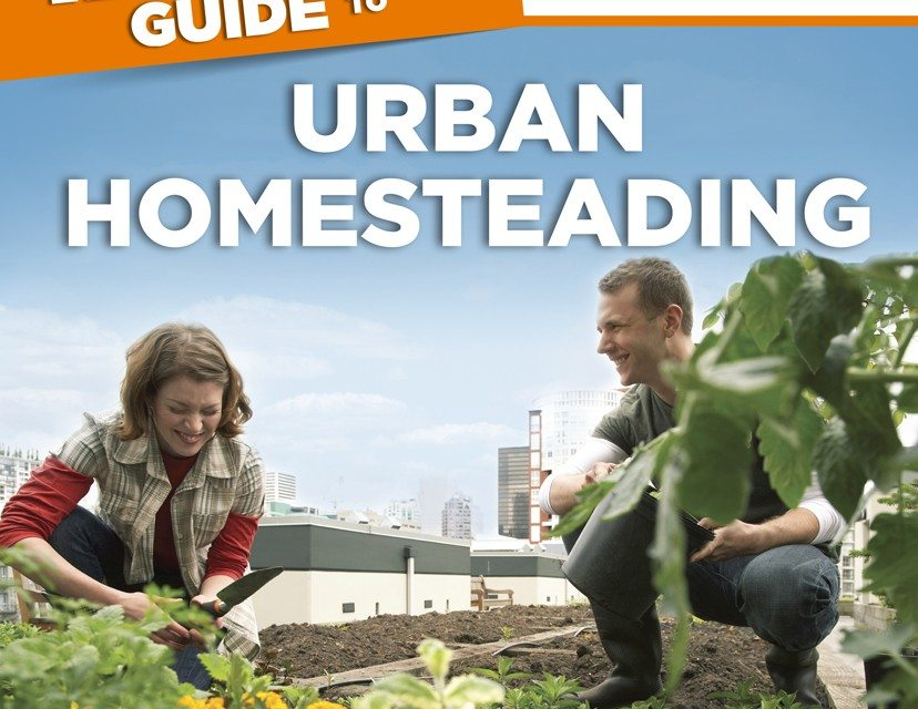 REVIEW: The Complete Idiot's Guide to Urban Homesteading