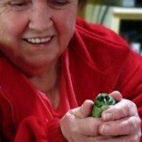 Mom's new little bird friend