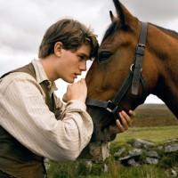 Jeremy Irvine - War Horse