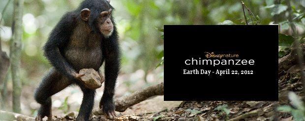 Disney Disneynature CHIMPANZEE Film - Earth Day 2012