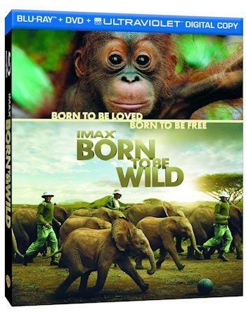 IMAX Born to Be Wild on Home Video -  DVD, Blu-ray, and 3D