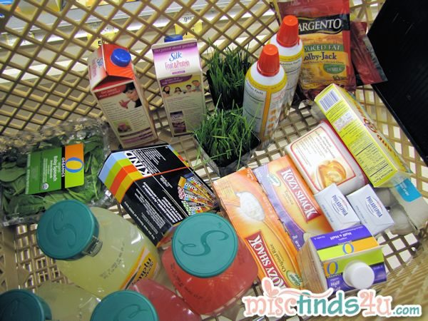 My June Dairy Month Shopping
