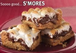 Homemade S'mores Bars from scratch