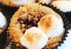 Chocolate, Marshmallow and Graham Cracker Bites