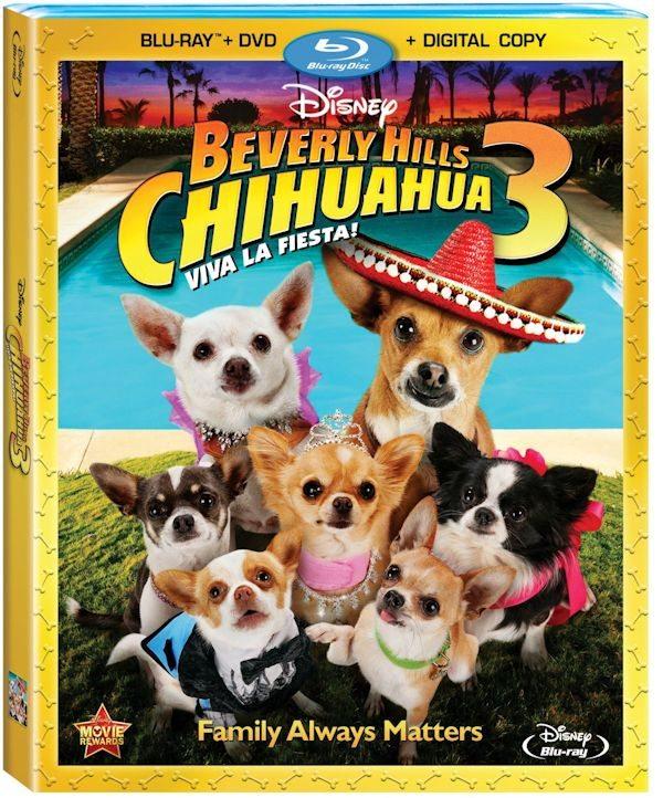 BEVERLY HILLS CHIHUAHUA 3, VIVA LA FIESTA!