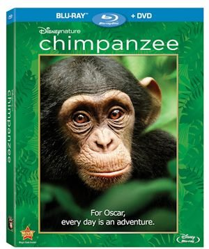 Chimpanzee on Blu-ray - bonus features are outstanding