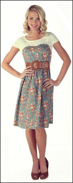 The Mikarose Daisy Dress - photo credit Mikarose.com