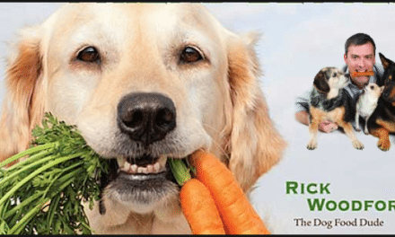 Easy, Nutritious Homemade Dog Kibble and Treats Recipes for Dogs