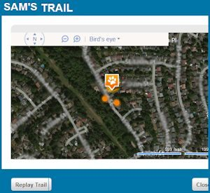 Using the Tagg Pet Tracker to follow your pet's trail