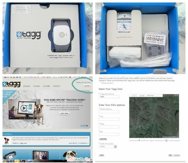 Setting up the Tagg Pet Tracker is so easy!