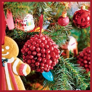 Cranberry-Covered Christmas Ornament Balls - by BH&G