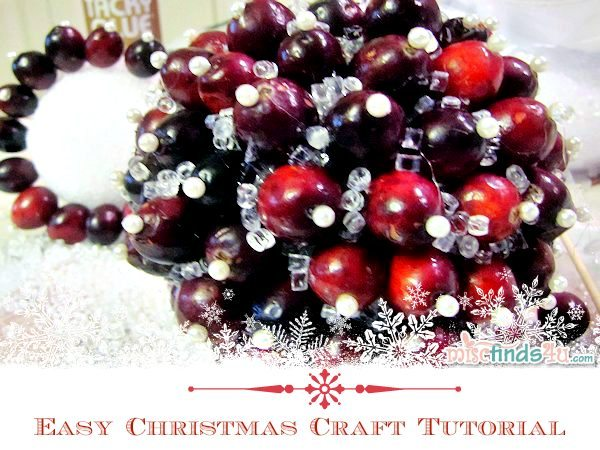 Easy Christmas Craft Tutorial using Real Cranberries