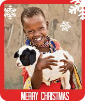 Give a Goat to a family in need