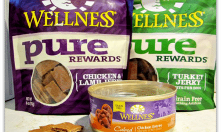 Wellness Dog Food a Natural Way to Feed Your Best Friend