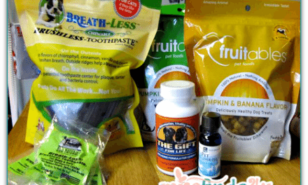 HealthWorks – Affordable Wellness Products for Pets and People Online