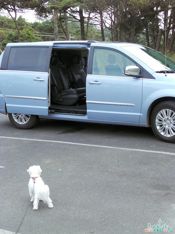 Side Door Alarms - 4-way flasher let others know loading/unloading is happening on the Chrysler Town & Country Minivan