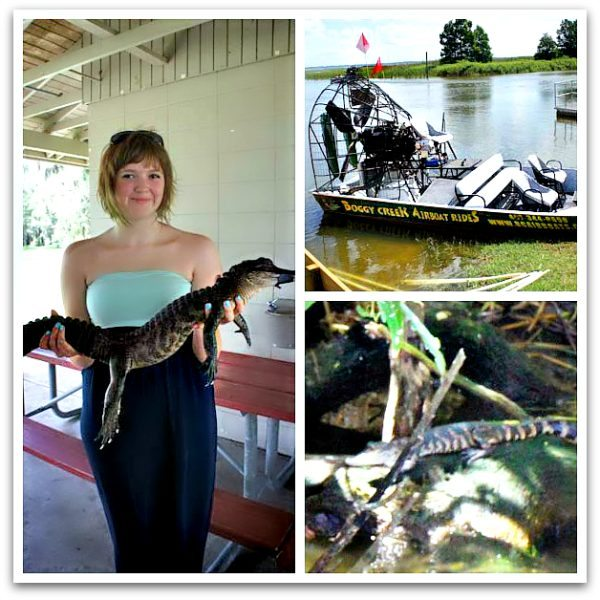 Kissimmee Gators and Boggy Creek Airboat Rides