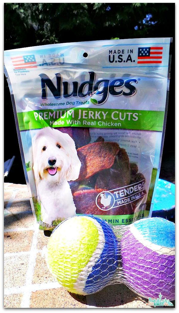 Nudges Wholesome Dog Treats - Made in the USA