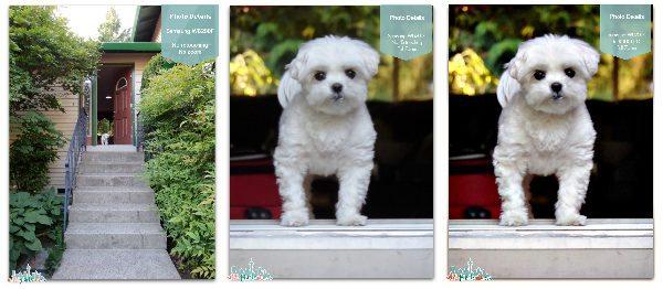 Samsung WB200 Comparison - #SocialCamera #Shop