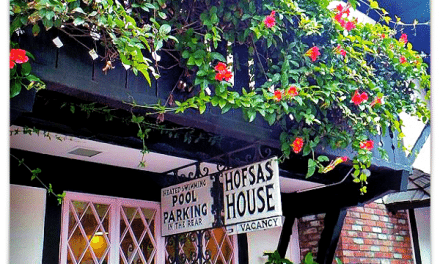 Hotels in Carmel: Hofsas House Hotel