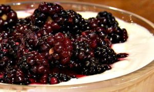 Honey-Blackberry Greek Yogurt Dip Recipe