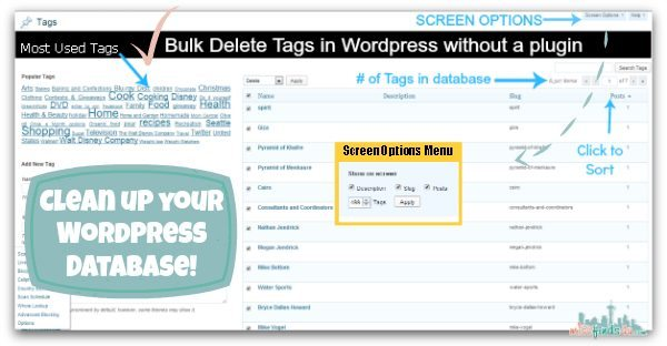 Bulk Delete Tags in WordPress without a Plug-in