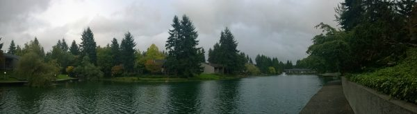 Panoramic Photo taken with the Nokia Lumia 1020 - unretouched #attseattle - AD