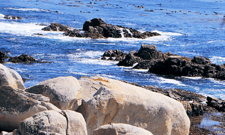 Pebble Beach CA: Casa Palmero, 17-Mile Drive and The Bench