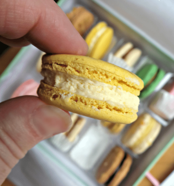 Sucre Louisiana Macaron Cookie Sampler