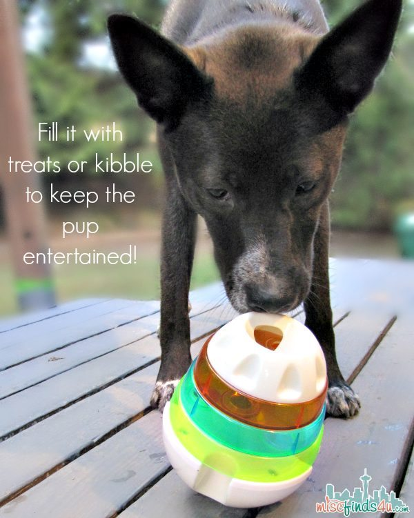 Gifts for Dogs - ad Dog Treat Ball - JW Pet Company Treat Tower Toy - Ad