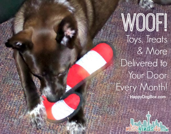 Happy Dog Box Toy Review