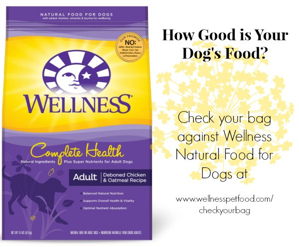 Who Sells Wellness Dog Food