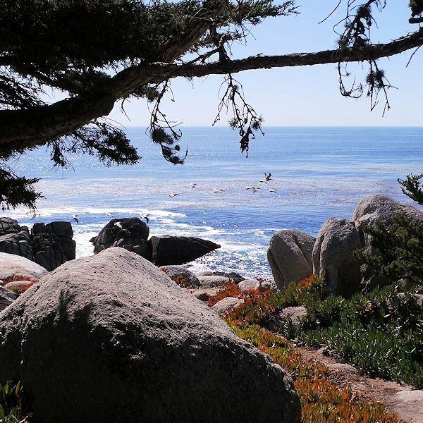 17 Mile Drive - Pebble Beach, CA