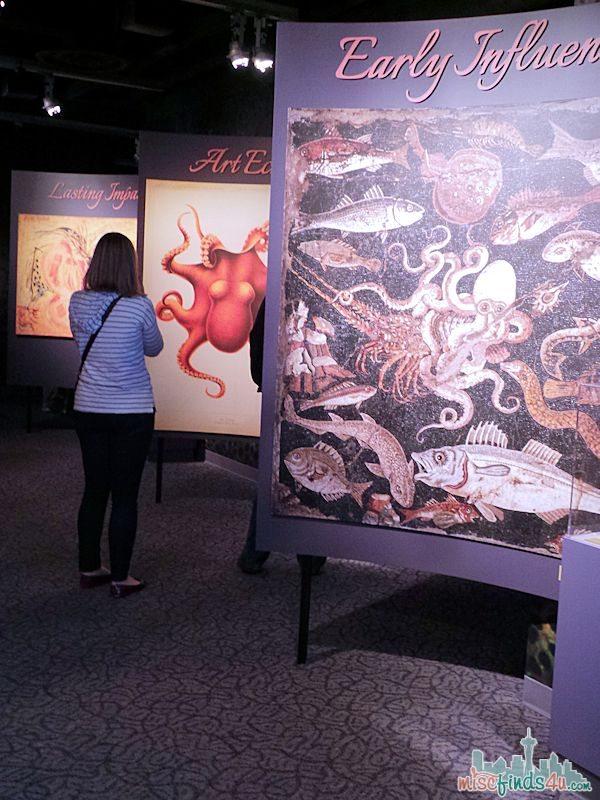 Monterey Aquarium Tentacles Exhibit - Octopus Myths (Tentacles Monterey Bay Aquarium New Exhibit Overview #Tentacles @SeeMonterey)
