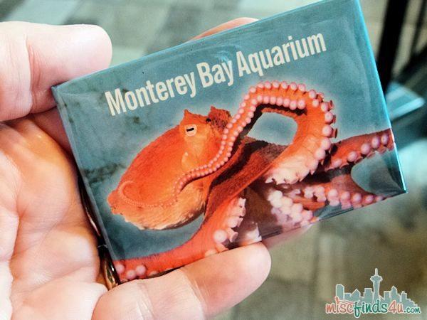 Monterey Aquarium Tentacles Exhibit - magnet