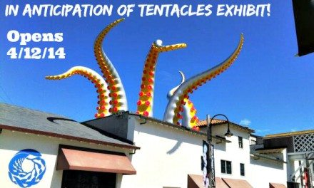See Monterey – Activities, Lodging, and Dining Info