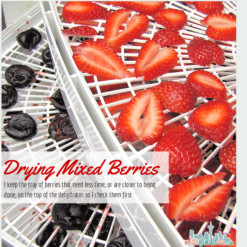 Dehydrating Mixed Berries Together - Tips