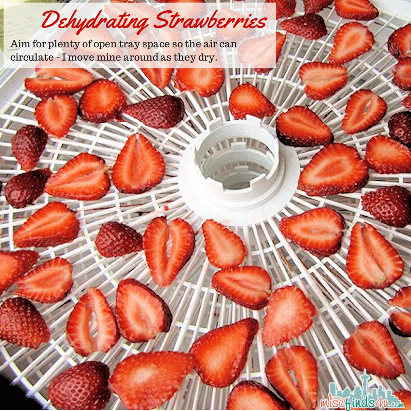 Dehydrating Strawberries - filling the trays